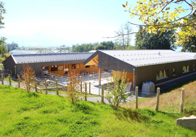Holzelementbau, Holzfassade, Fenster, Türen und Innenausba