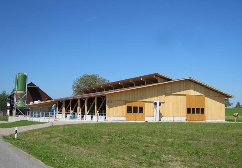 Neubau Boxenlaufstall in Bubikon