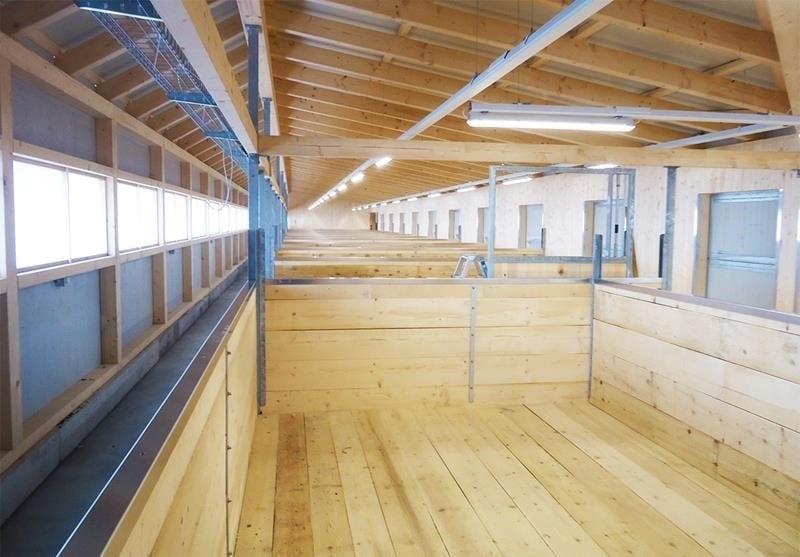 neubau-eselheim-feldbach-planung-mithilfe-holzbau