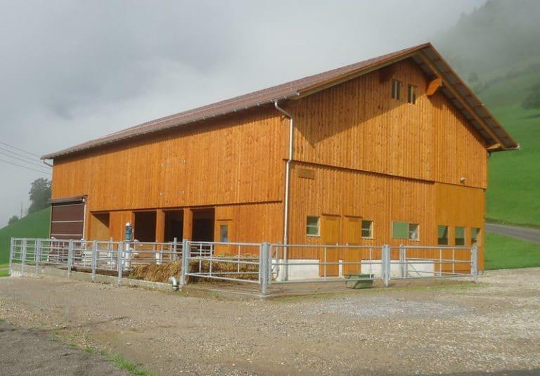 Neubau Jungviehstall und Remise in Goldingen