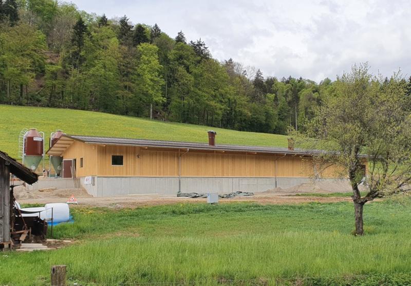 Neubau BIO-Legehennenstall in Fisibach - Baujahr 2021